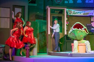 "Chiffon, Crystal and Ronnette assist Seymour in discovering the deep, dark secret of Audrey Two in Stray Dog's ""Little Shop Of Horrors."" Photo: John Lamb"